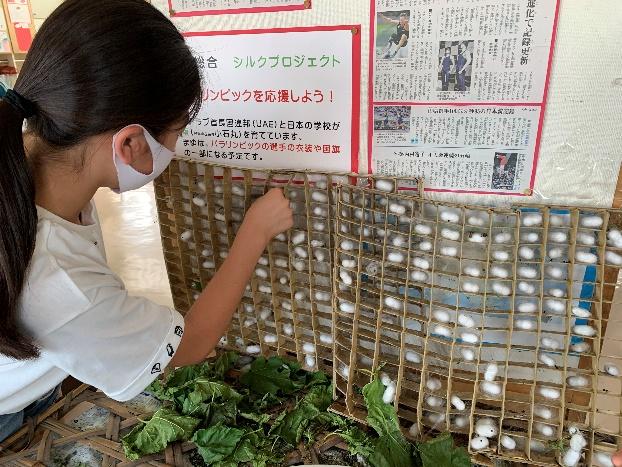 6年生シルクプロジェクト「シルクスカーフ贈呈式」